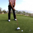 Pro golfer on a world class golf course — Stock Video