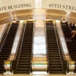 Timelapse of crowds of commuters using escalators at new york's grand central station — Stock Video