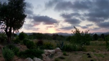 Timelapse of the sun setting over a garden in the hills of ibiza, spain — Stock Video