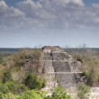 Time-lapse of the mayan ruins at kalakmul mexico — 图库视频影像