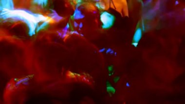 Large crowd filling up the dancefloor — Stock Video