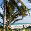 Stock Video: Timelapse of a paradise beach, mexican caribbean coast