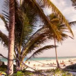 Timelapse of a paradise beach, mexican caribbean coast — Stock Video