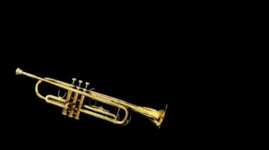 Stop motion clip of a trumpet spinning around — Stock Video