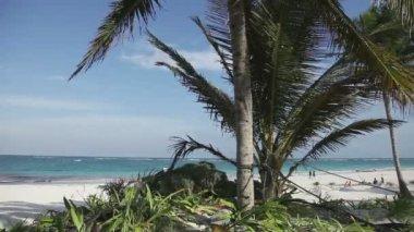 天堂海滩,墨西哥加勒比海岸 — 图库视频影像