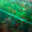 Crowds at music event with laser pattern over them — Stock Video