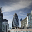 Gherkin fisheye — Stock Photo