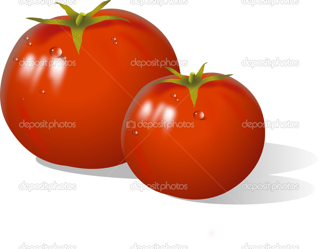 Tomatos — Stock Vector #14006691