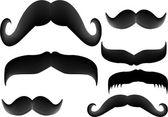Moustache — Stock Vector