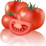 Tomato — Stock Vector #21838937