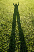 Silhouettes over grass — Stock Photo