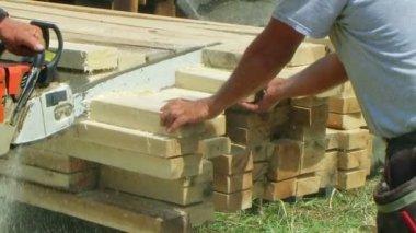 Chainsaw cięcia drewna — Wideo stockowe