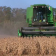 Stock Video: Combine Harvesting Soybeans