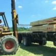 Forklift Unloading Construction Lumber — Stock Video #14510921