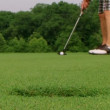 Stock Video: Golfer Sinks Putt