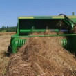 Square Baling Hay - Stock Photo