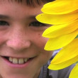 Boy Beside Sunflower — Stock Video