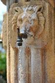 ライオンの顔を持つ石造りの噴水 — ストック写真