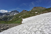 Snow in the summer under the mountains — Stock Photo