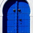 Stock Photo: Door in sidi bou said