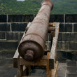 Cannon in fort adelaide — Stock Photo