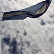 Waving flag - Stok fotoraf