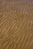 Shore texture and curved line in colonia del sacramento — Stock Photo
