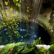 Stock Photo: Cenote ill kill mexico