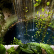 Stock Photo: Cenote ill kill