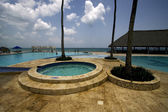 Paz palm republica dominicana piscina árvore — Foto Stock