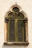 Old green window — Stock Photo