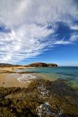 Beach water coastline and summer in lanzarote spain — Stock Photo