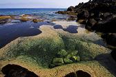 Rocha lagoa de almíscar e verão na espanha lanzarote — Foto Stock