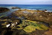 Vaggar stenen sky moln stranden vatten kusten i lanzarote spanien — Stockfoto