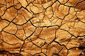 Texture of a broke dry sand — Stock Photo