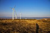 Wiatr turbiny niebo w afryce hiszpania — Zdjęcie stockowe
