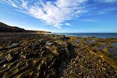 Rock cloud beach water coastline and summer in lanzarote — Stock Photo