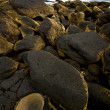 Rock stone sky cloud beach  coastline and summer in lanzarote sp — Stock fotografie