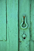 Canarias brass brown knocker in a green — Stock Photo
