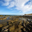 In lanzarote spain  rock stone sky cloud beach — 图库照片