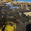 In spain  lanzarote  rock stone  water  musk pond  coastline and — Foto de Stock