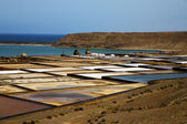 Salt in lanzarote stone sky water coastline and summer — Photo