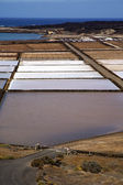 Salt in lanzarote spain — Stockfoto