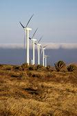 Las turbinas de viento de áfrica y el cielo en la isla — Foto de Stock