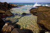 Froth coastline in lanzarote spain musk and summer — Stock Photo