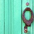 Knocker lanzarote abstract door wood in the green — Foto Stock