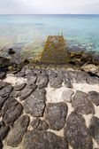 Pier water boat yacht coastline and summer in lanzarote spai — Stock Photo