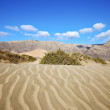 Abstract yellow dune beach  hil and mountain in    lanzarote — Stock Photo