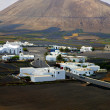 City cultivation home viticulture lanzarote — Stock Photo #36621325