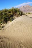 Vesnice žluté duny pláže hil a hory Lanzarote — Stock fotografie